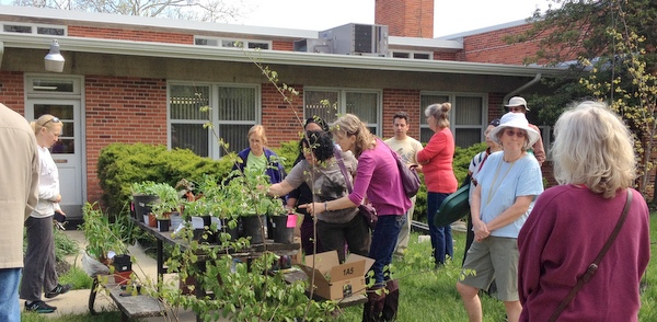 plant swap at Greenbelt Homes Inc