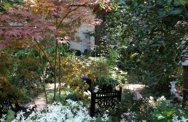 Lovely garden in Greenbelt Homes