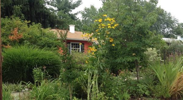 Lovely garden in Rockville