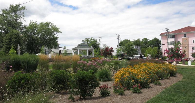 garden in North Beach, Maryland