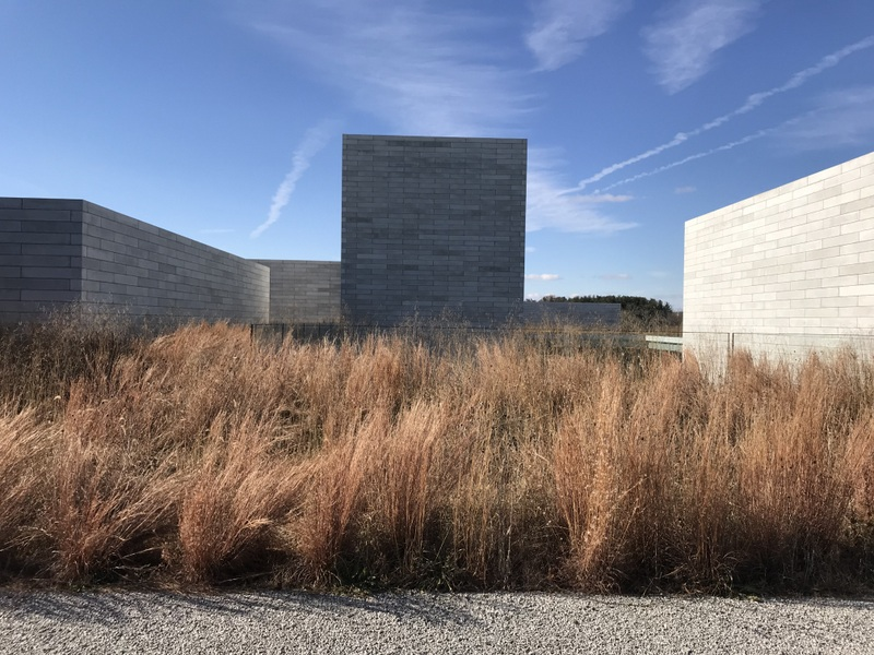 Dying grasses at Glenstone Museum