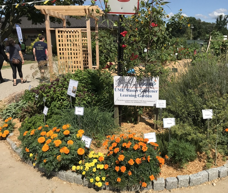 Master Gardener garden at Maryland State Fair