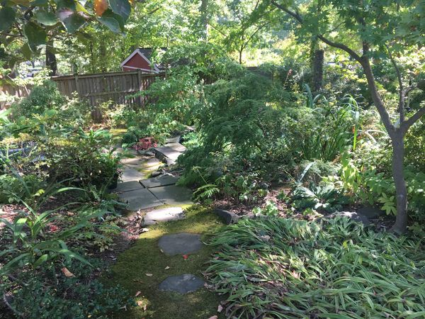 Bordelon garden in Greenbelt Maryland