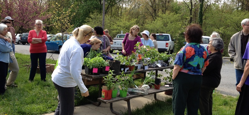 Plant swap at Greenbelt Homes Inc offices
