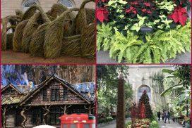 2019 Holidays at US Botanic Garden