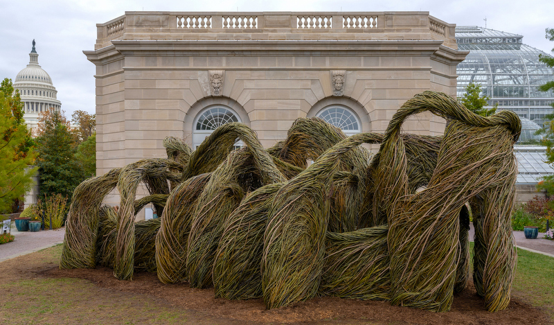 Patrick Dougherty's stickhouse at US Botanic Garden