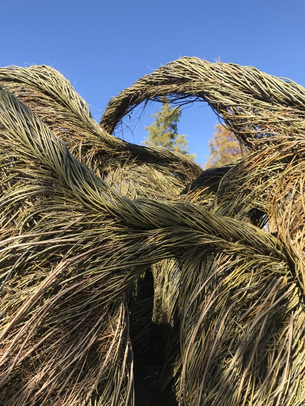 "Detail of ""O Say Can You See"" stickhouse by Patrick Dougherty at US Botanic Garden"
