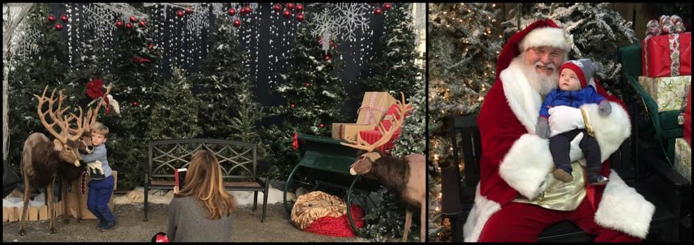 Santa and reindeer at Homestead Gardens