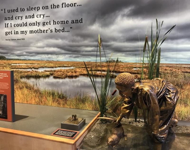 Exhibit in the Harriet Tubman Underground Railroad Park Visitor Center