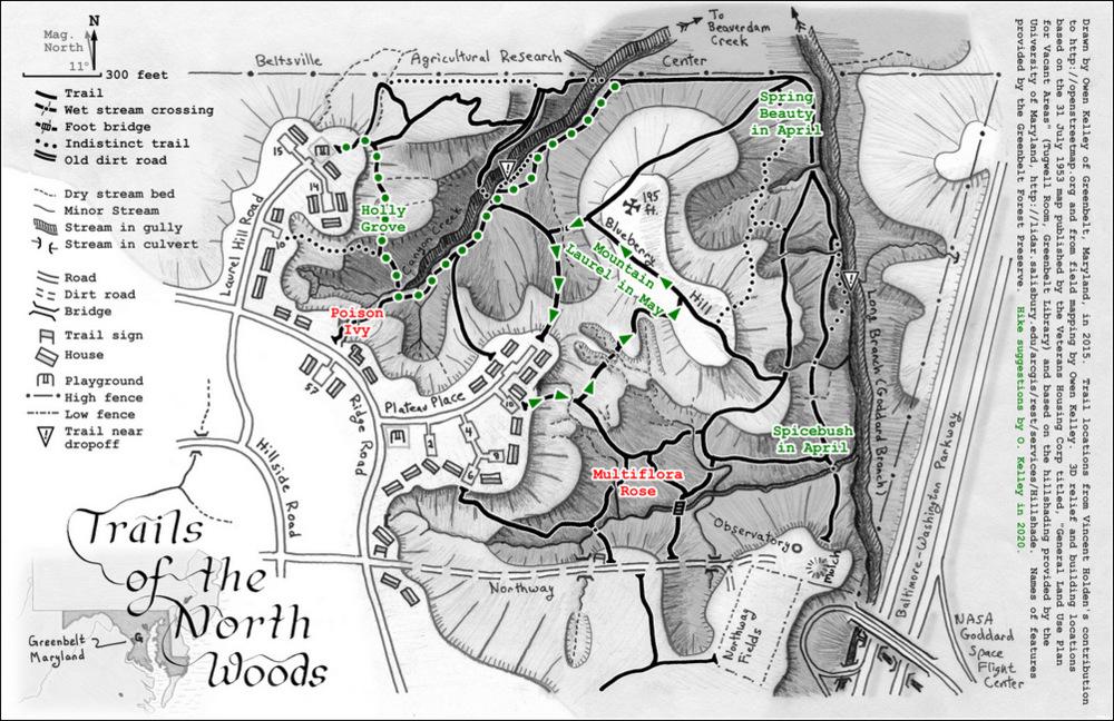 Trails of Greenbelt's North Woods