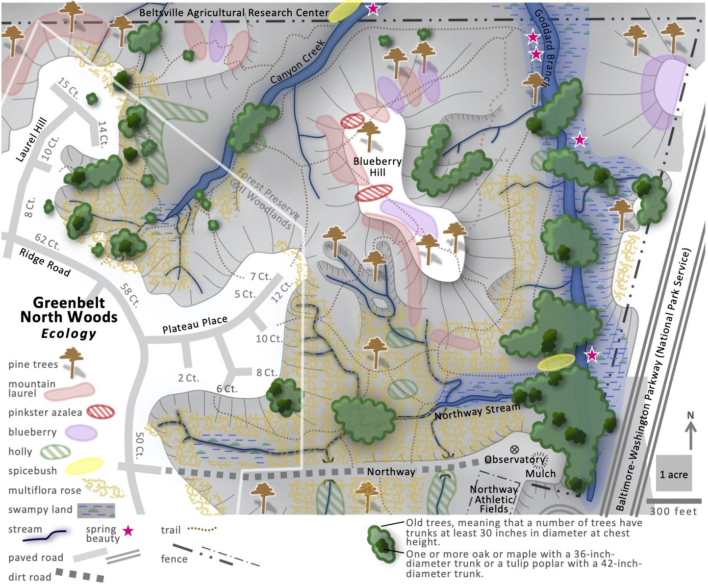 Map of the ecology of Greenbelt's North Woods