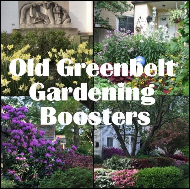Old Greenbelt Gardening Boosters
